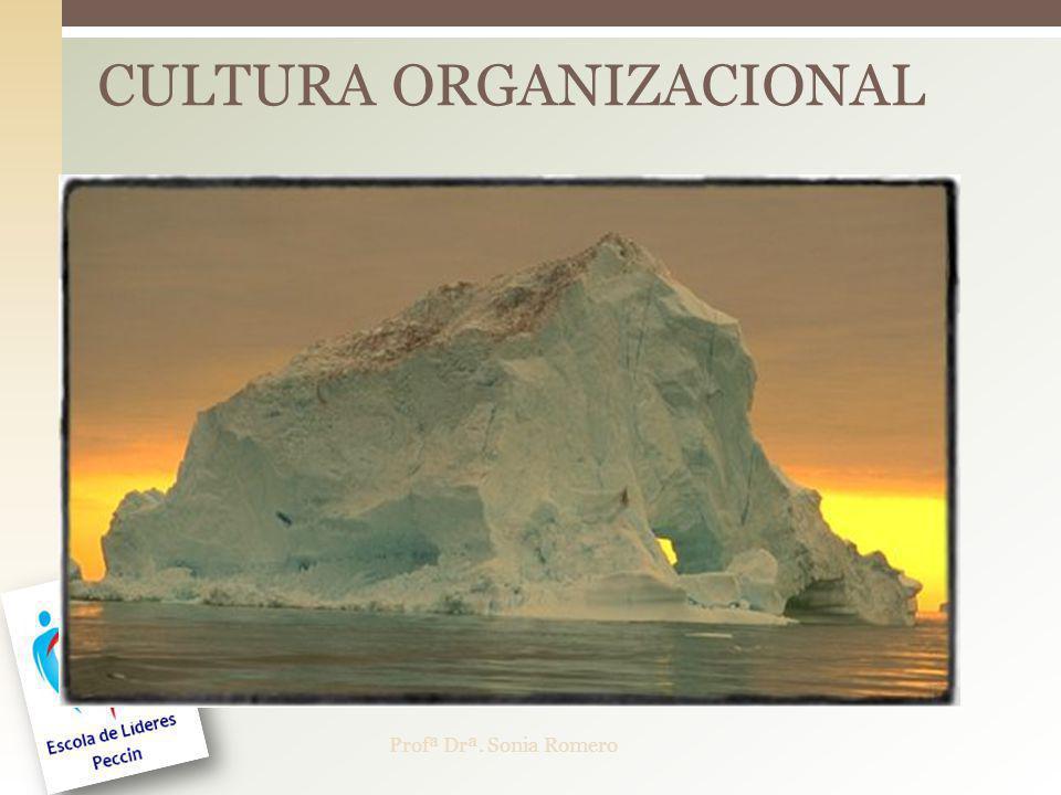 CULTURA ORGANIZACIONAL Profª Drª. Sonia Romero