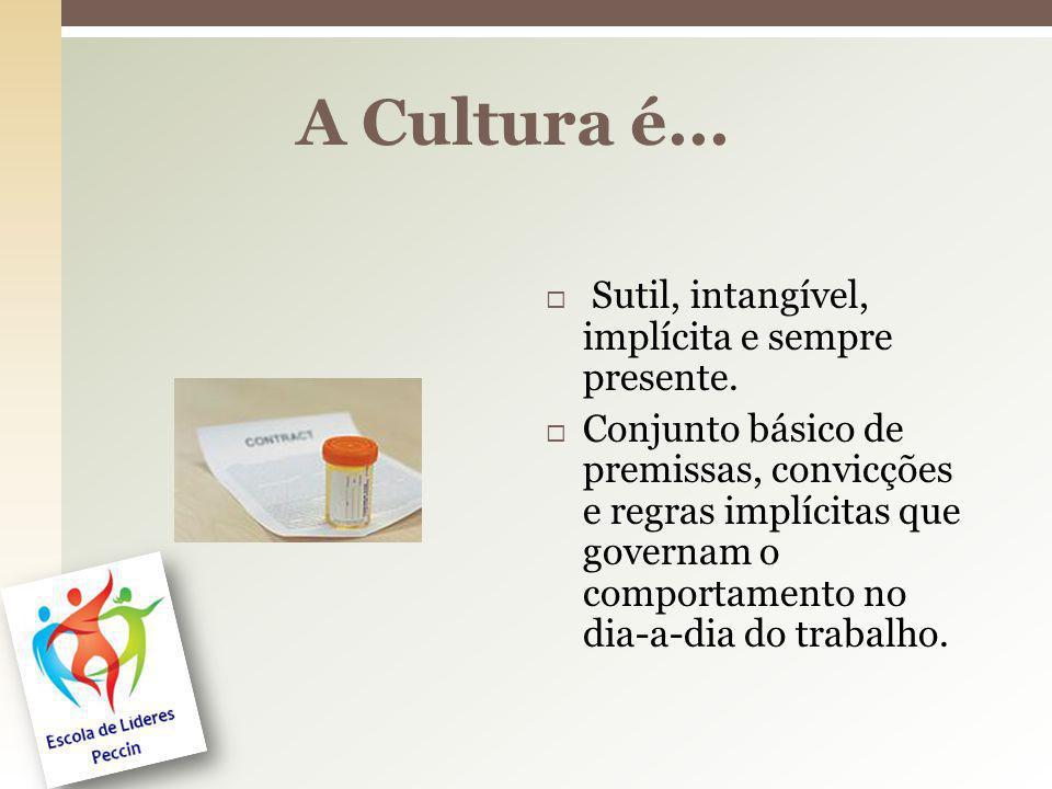 A Cultura é... Sutil, intangível, implícita e sempre presente. Conjunto básico de premissas, convicções e regras implícitas que governam o comportamen