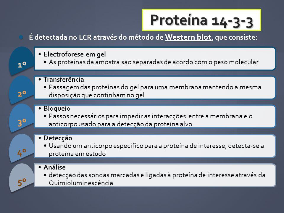 É detectada no LCR através do método de Western blot, que consiste: É detectada no LCR através do método de Western blot, que consiste: 1º Electrofore