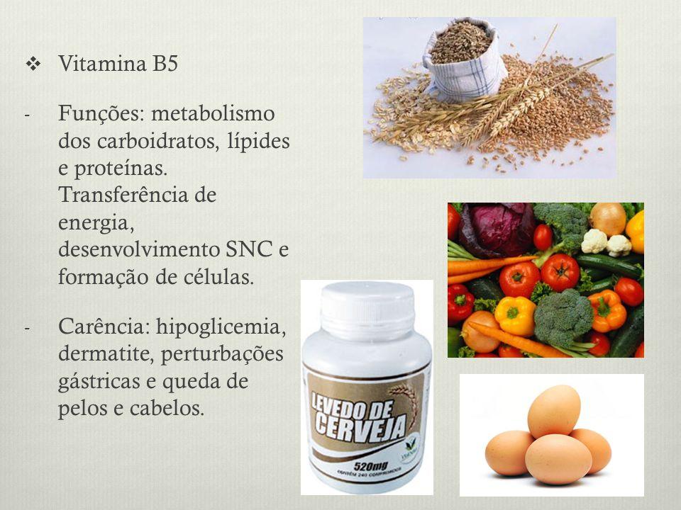 Vitamina B5 - Funções: metabolismo dos carboidratos, lípides e proteínas.