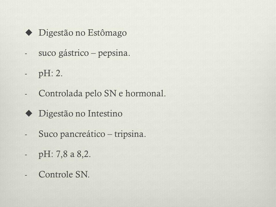 Digestão no Estômago - suco gástrico – pepsina.- pH: 2.