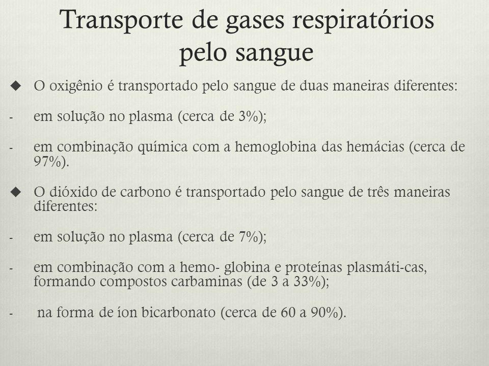 Transporte de gases respiratórios pelo sangue O oxigênio é transportado pelo sangue de duas maneiras diferentes: - em solução no plasma (cerca de 3%); - em combinação química com a hemoglobina das hemácias (cerca de 97%).