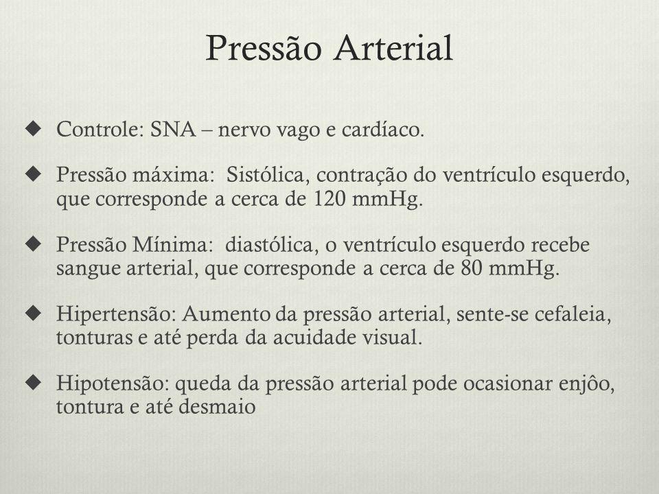Pressão Arterial Controle: SNA – nervo vago e cardíaco.