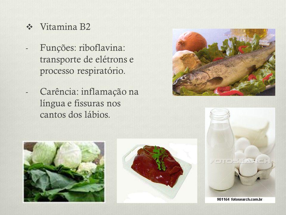 Vitamina B2 - Funções: riboflavina: transporte de elétrons e processo respiratório.