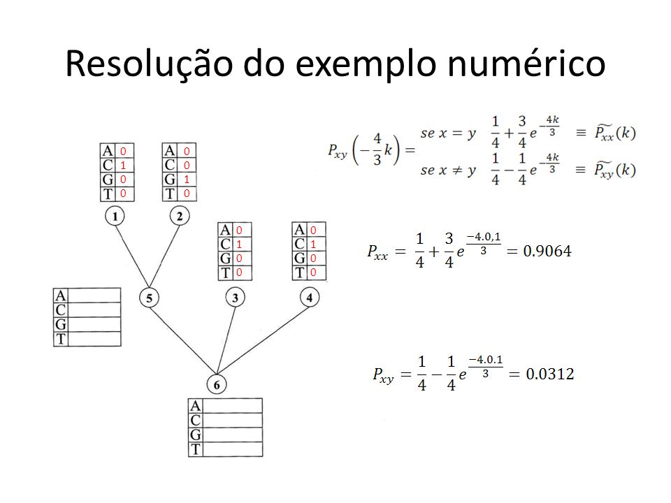 Resolução do exemplo numérico 01000100 00100010 01000100 01000100