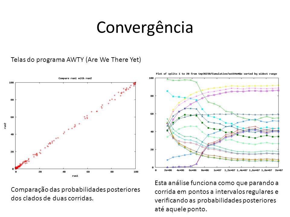 Convergência Telas do programa AWTY (Are We There Yet) Comparação das probabilidades posteriores dos clados de duas corridas. Esta análise funciona co