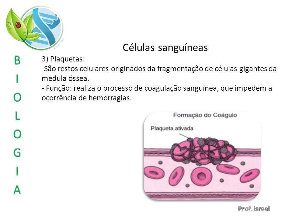 Células sanguíneas 3) Plaquetas: -São restos celulares originados da fragmentação de células gigantes da medula óssea. - Função: realiza o processo de
