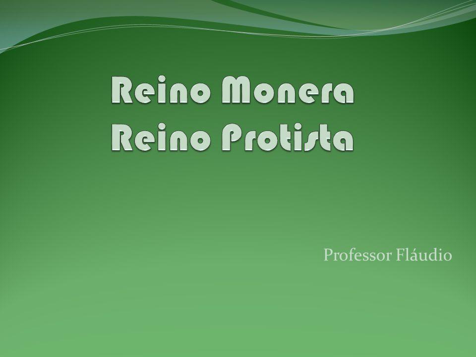 CARACTERISTICAS GERAIS REINO MONERA – Procariontes, unicelulares, autótrofos ou heterótrofos.