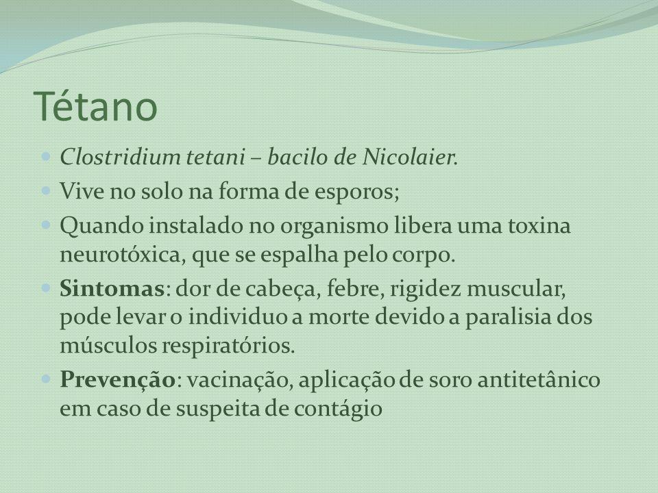 Tétano Clostridium tetani – bacilo de Nicolaier. Vive no solo na forma de esporos; Quando instalado no organismo libera uma toxina neurotóxica, que se