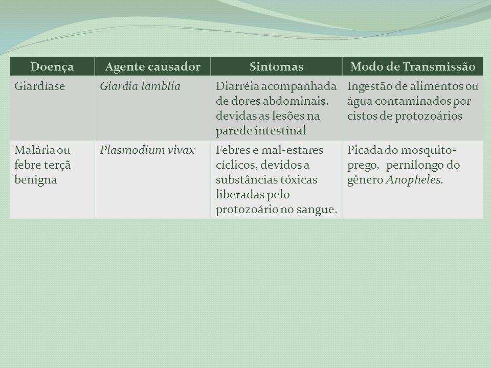 DoençaAgente causadorSintomasModo de Transmissão GiardíaseGiardia lambliaDiarréia acompanhada de dores abdominais, devidas as lesões na parede intesti