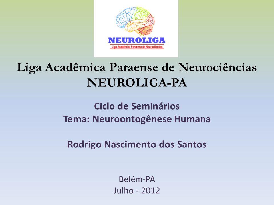 Liga Acadêmica Paraense de Neurociências NEUROLIGA-PA Ciclo de Seminários Tema: Neuroontogênese Humana Rodrigo Nascimento dos Santos Belém-PA Julho -