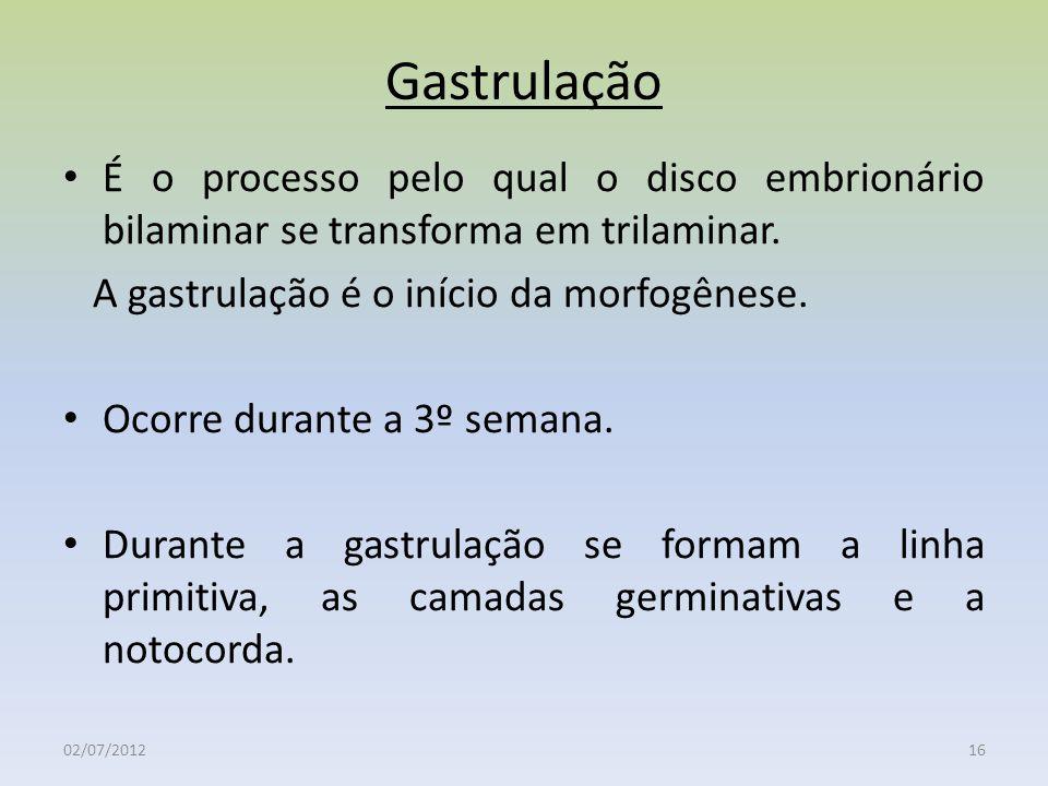 Gastrulação 02/07/201216 É o processo pelo qual o disco embrionário bilaminar se transforma em trilaminar. A gastrulação é o início da morfogênese. Oc