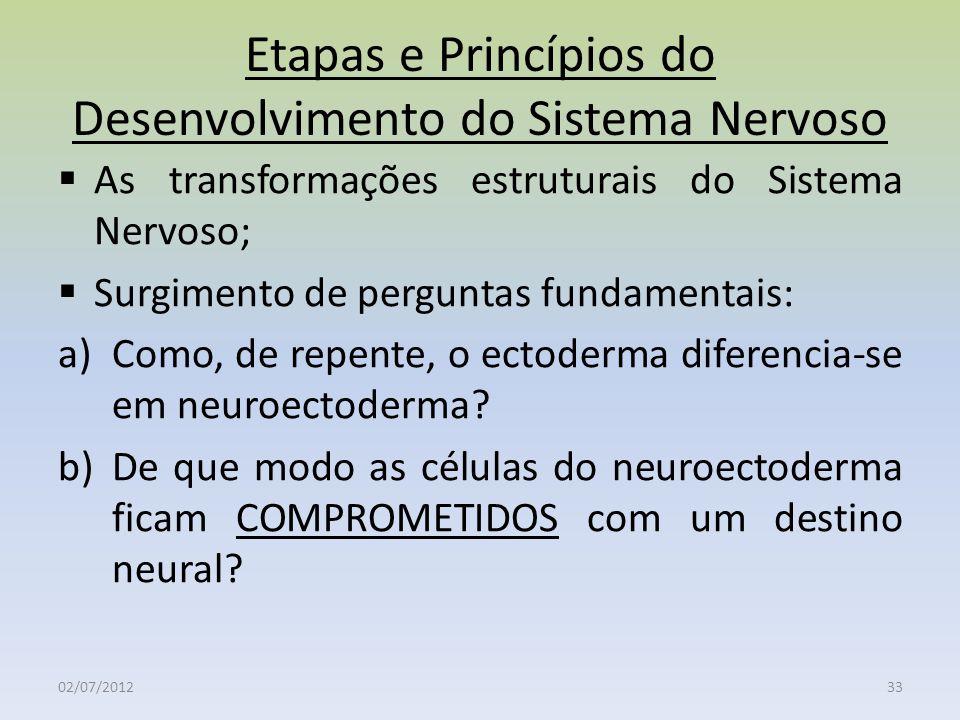 Etapas e Princípios do Desenvolvimento do Sistema Nervoso As transformações estruturais do Sistema Nervoso; Surgimento de perguntas fundamentais: a)Co