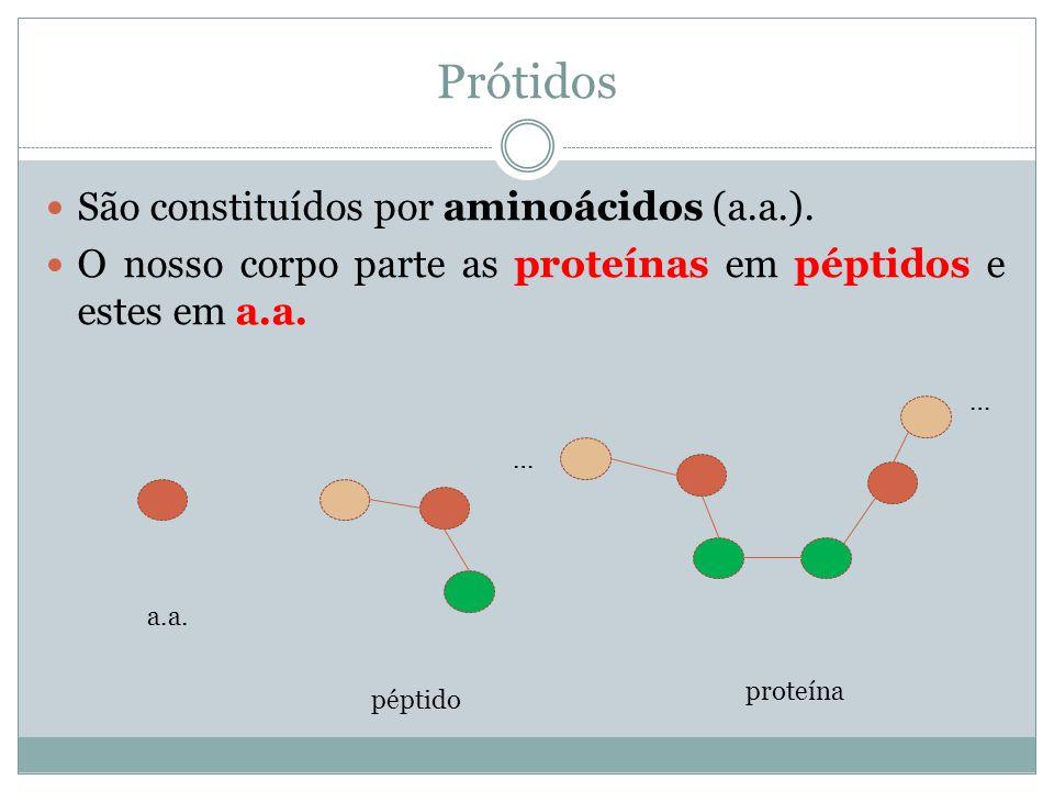 Prótidos São constituídos por aminoácidos (a.a.). O nosso corpo parte as proteínas em péptidos e estes em a.a. a.a. péptido … … proteína