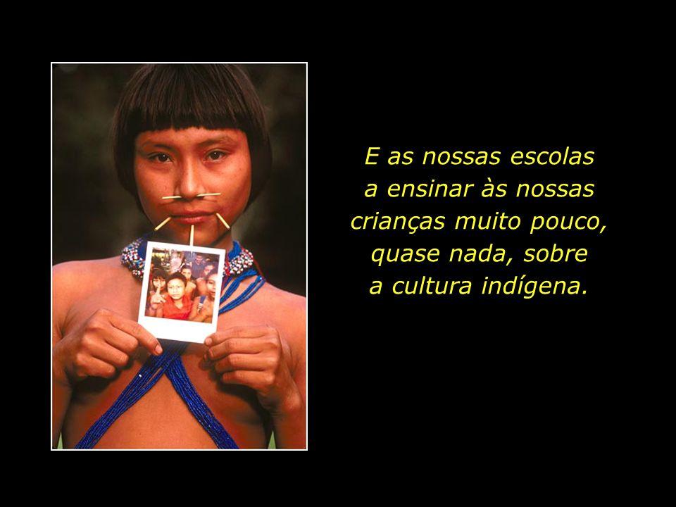 holdemqueen@hotmail.com Quinhentos anos passados, ainda não aprendemos a valorizar a valiosa herança cultural indígena, que levou milhares de anos par
