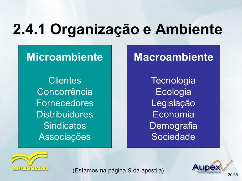 Macroambiente Tecnologia Ecologia Legislação Economia Demografia Sociedade (Estamos na página 9 da apostila) 20/66 2.4.1 Organização e Ambiente Microa