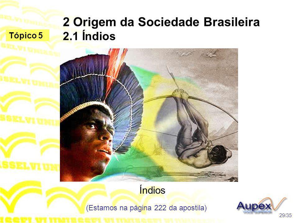 2 Origem da Sociedade Brasileira 2.1 Índios Índios (Estamos na página 222 da apostila) 29/35 Tópico 5