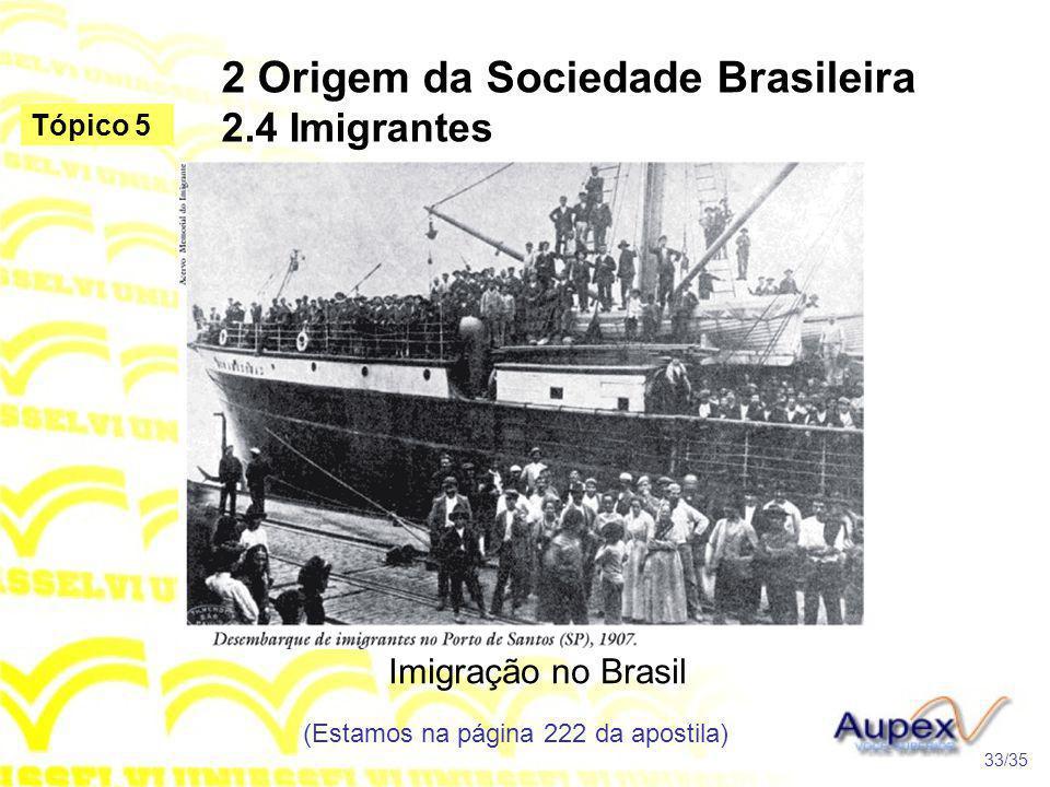 2 Origem da Sociedade Brasileira 2.4 Imigrantes Imigração no Brasil (Estamos na página 222 da apostila) 33/35 Tópico 5