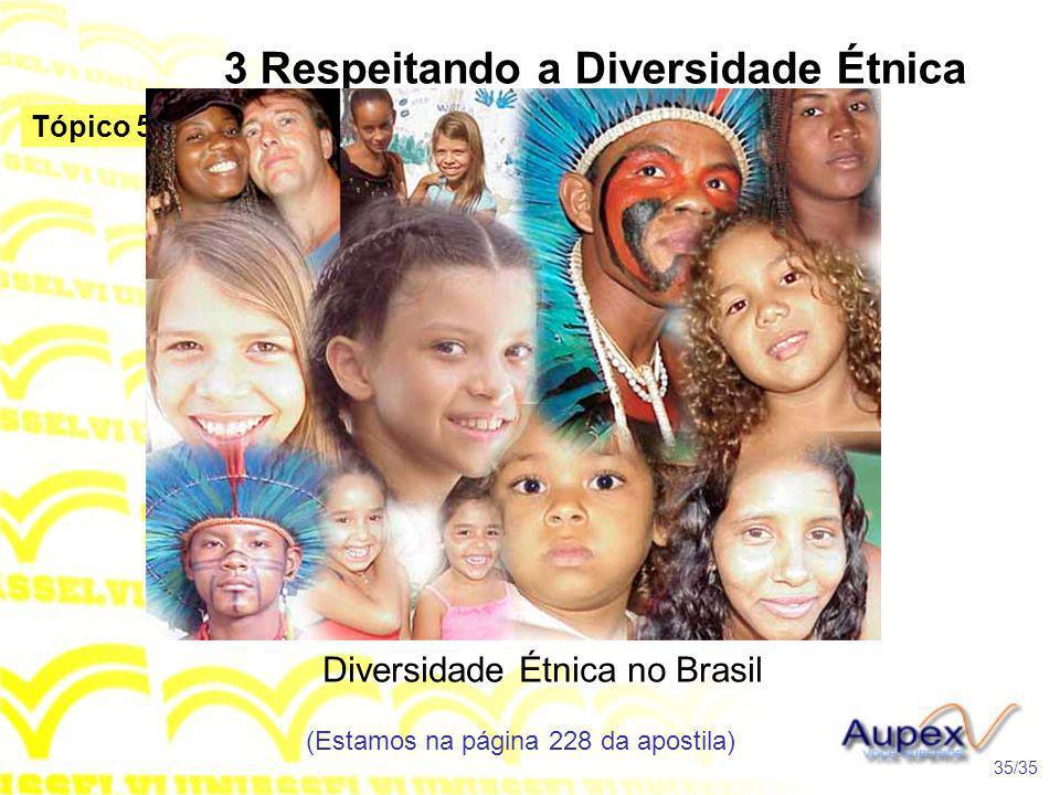 3 Respeitando a Diversidade Étnica no Brasil Diversidade Étnica no Brasil (Estamos na página 228 da apostila) 35/35 Tópico 5