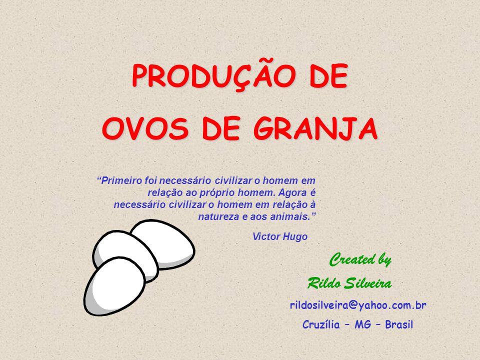 PRODUÇÃO DE OVOS DE GRANJA Rildo Silveira Created by Primeiro foi necessário civilizar o homem em relação ao próprio homem.
