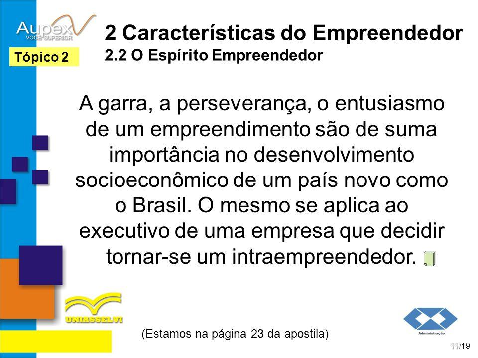 2 Características do Empreendedor 2.2 O Espírito Empreendedor A garra, a perseverança, o entusiasmo de um empreendimento são de suma importância no de