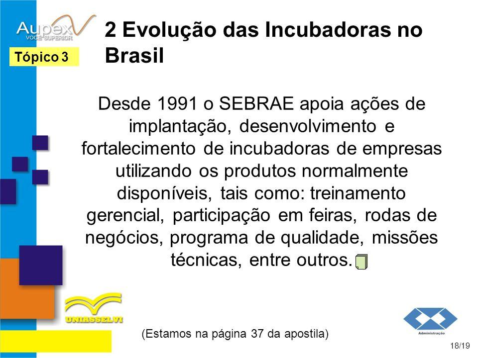 2 Evolução das Incubadoras no Brasil Desde 1991 o SEBRAE apoia ações de implantação, desenvolvimento e fortalecimento de incubadoras de empresas utili