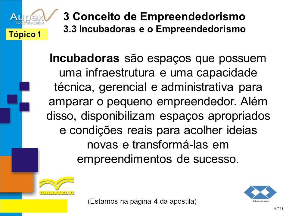 3 Conceito de Empreendedorismo 3.3 Incubadoras e o Empreendedorismo Incubadoras são espaços que possuem uma infraestrutura e uma capacidade técnica, g