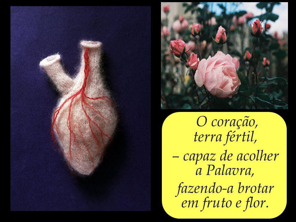 O coração, um jardim, – onde devemos plantar a rosa do amor.
