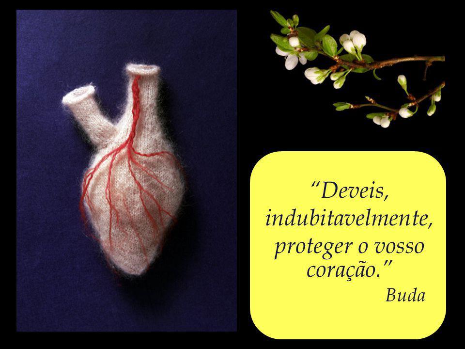 O coração, terra fértil, – capaz de acolher a Palavra, fazendo-a brotar em fruto e flor.