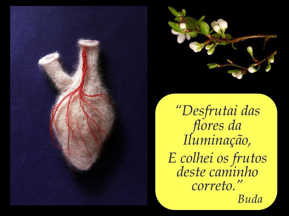 Deveis, indubitavelmente, proteger o vosso coração. Buda