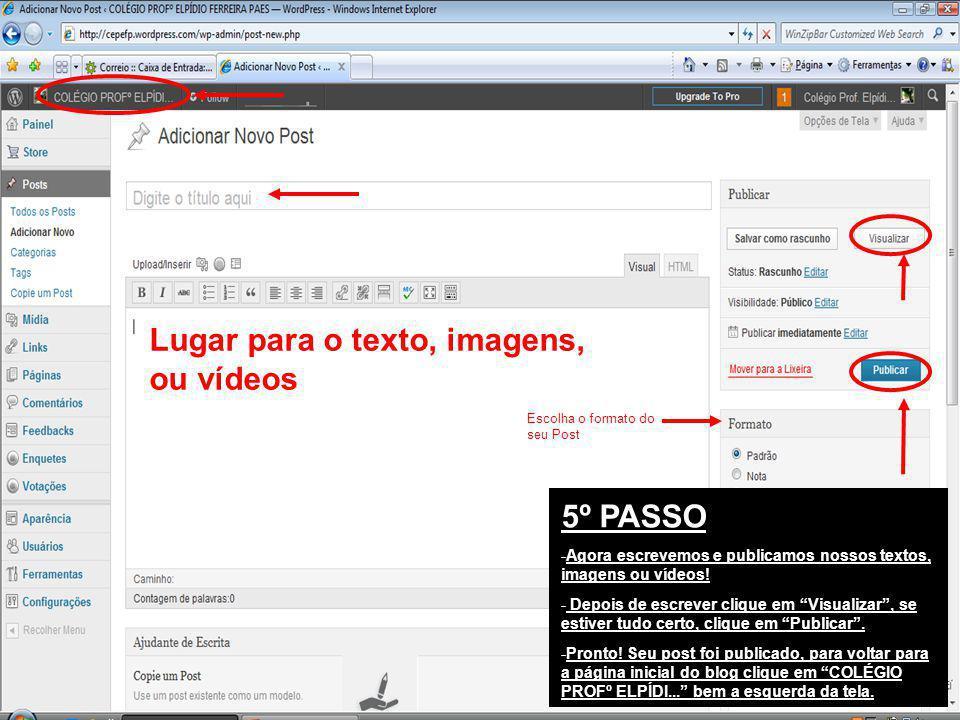 5º PASSO -Agora escrevemos e publicamos nossos textos, imagens ou vídeos! - Depois de escrever clique em Visualizar, se estiver tudo certo, clique em