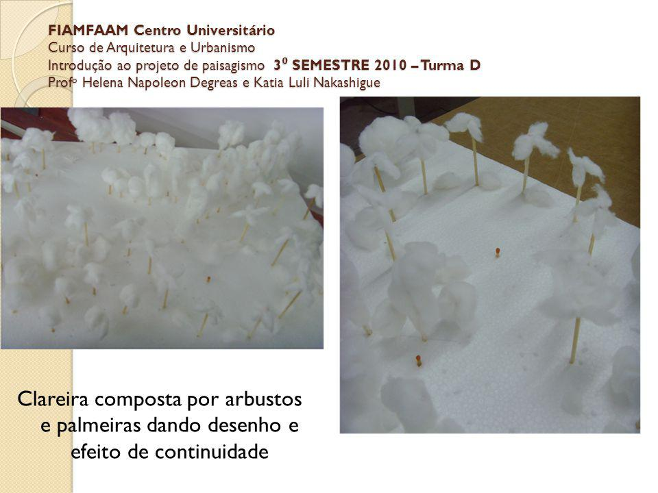 FIAMFAAM Centro Universitário Curso de Arquitetura e Urbanismo Introdução ao projeto de paisagismo 3 SEMESTRE 2010 – Turma D Prof o Helena Napoleon De