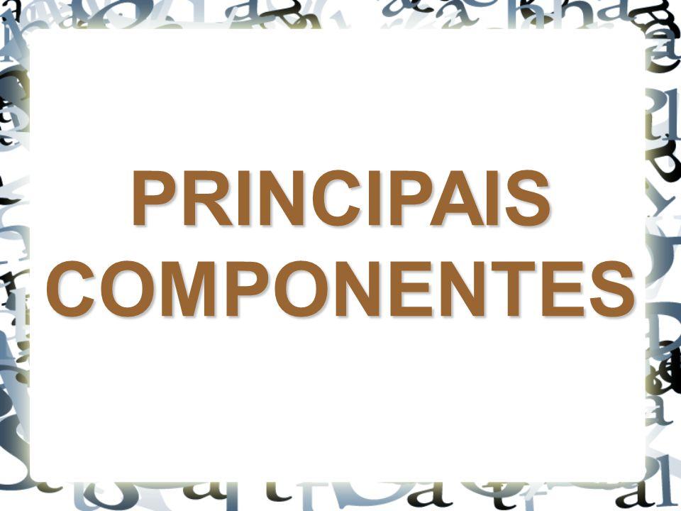 CINCO PRINCIPAIS COMPONENTES: ESTABILIZADOR GABINETE MONITOR DE VÍDEO TECLADO MOUSE
