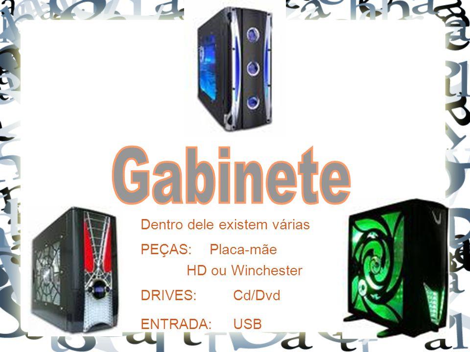 Dentro dele existem várias PEÇAS: Placa-mãe HD ou Winchester DRIVES: Cd/Dvd ENTRADA:USB