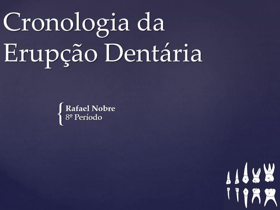 { Cronologia da Erupção Dentária Rafael Nobre 8º Período