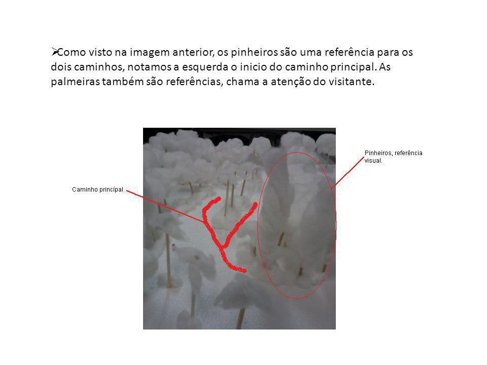 Como visto na imagem anterior, os pinheiros são uma referência para os dois caminhos, notamos a esquerda o inicio do caminho principal. As palmeiras t