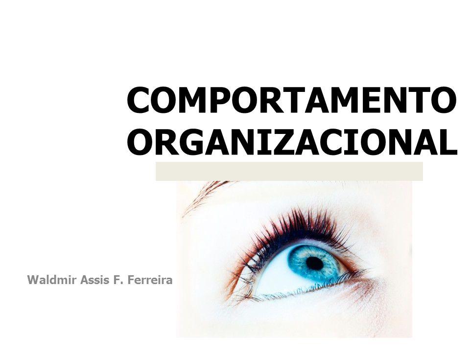 Waldmir Assis Freitas Ferreira Waldmir.ferreira@aedu.com Disponibilidade de material: https://sites.google.com/a/aedu.com/waldmir /comportamento-organizacional