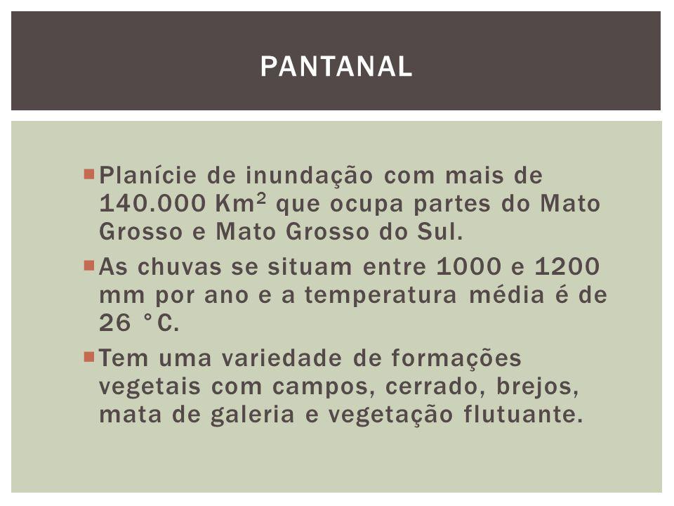 Planície de inundação com mais de 140.000 Km 2 que ocupa partes do Mato Grosso e Mato Grosso do Sul. As chuvas se situam entre 1000 e 1200 mm por ano