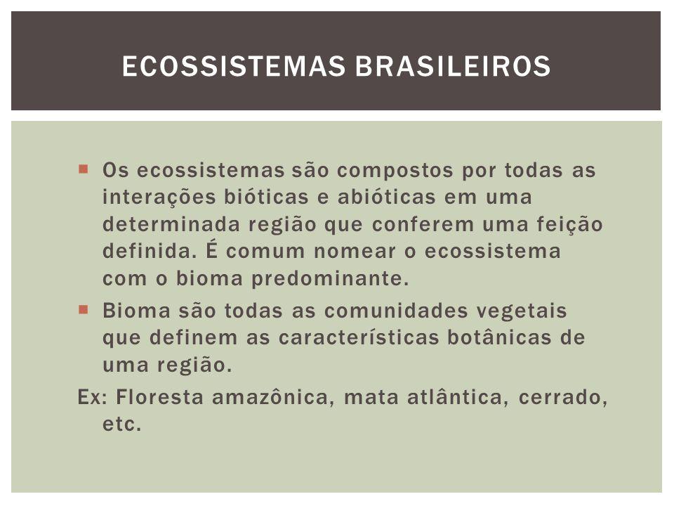 Os ecossistemas são compostos por todas as interações bióticas e abióticas em uma determinada região que conferem uma feição definida. É comum nomear