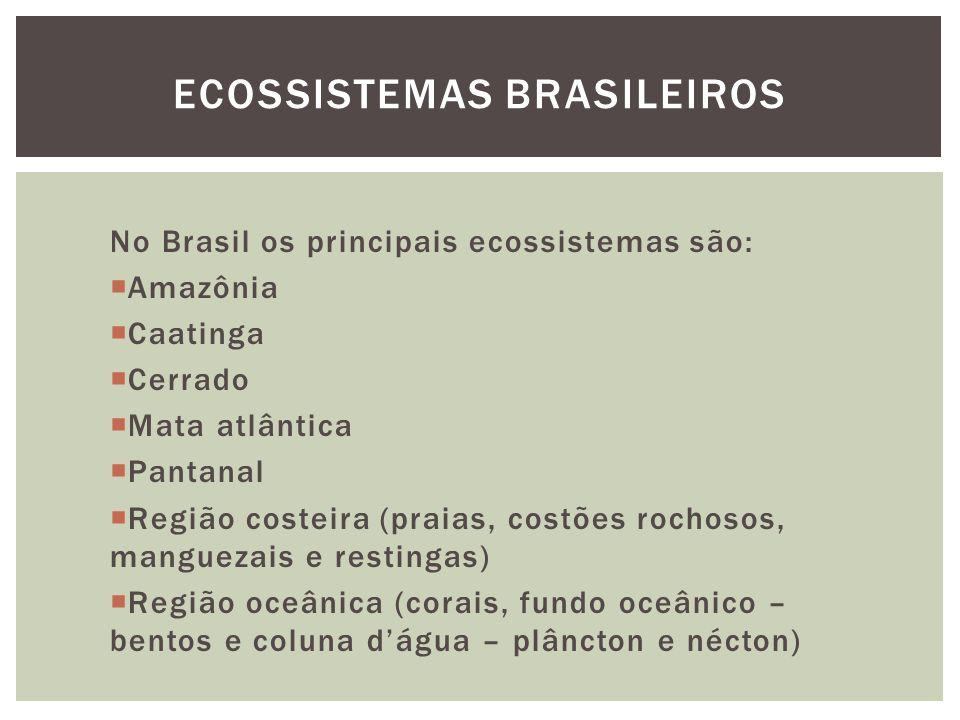 No Brasil os principais ecossistemas são: Amazônia Caatinga Cerrado Mata atlântica Pantanal Região costeira (praias, costões rochosos, manguezais e re