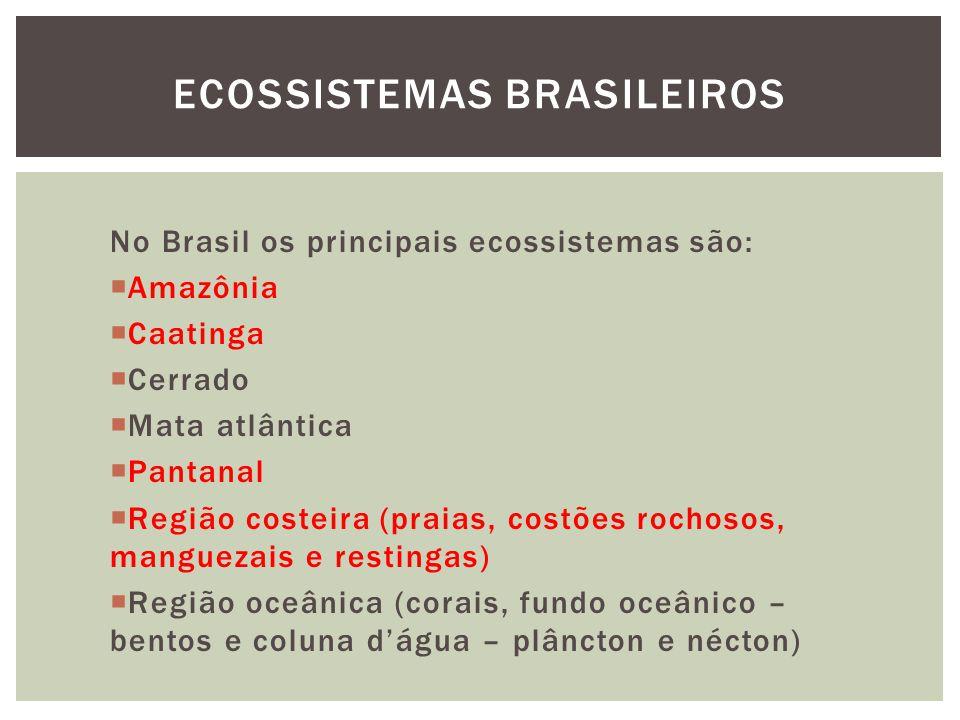 No Brasil os principais ecossistemas são: Amazônia Caatinga Cerrado Mata atlântica Pantanal Região costeira (praias, costões rochosos, manguezais e restingas) Região oceânica (corais, fundo oceânico – bentos e coluna dágua – plâncton e nécton) ECOSSISTEMAS BRASILEIROS