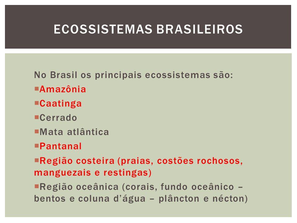 Floresta equatorial pluvial Forma-se entre latitudes de 20ºN e 20ºS.
