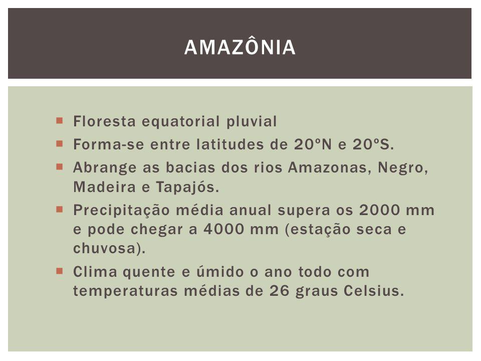 Floresta equatorial pluvial Forma-se entre latitudes de 20ºN e 20ºS. Abrange as bacias dos rios Amazonas, Negro, Madeira e Tapajós. Precipitação média