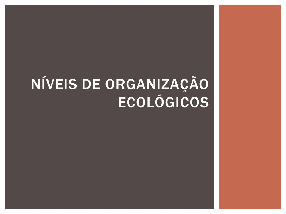 NÍVEIS DE ORGANIZAÇÃO ECOLÓGICOS