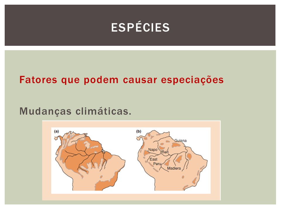 Fatores que podem causar especiações Mudanças climáticas. ESPÉCIES