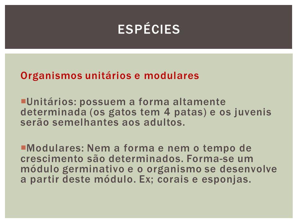Organismos unitários e modulares Unitários: possuem a forma altamente determinada (os gatos tem 4 patas) e os juvenis serão semelhantes aos adultos. M