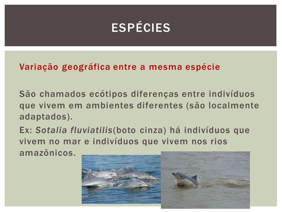 Variação geográfica entre a mesma espécie São chamados ecótipos diferenças entre indivíduos que vivem em ambientes diferentes (são localmente adaptado