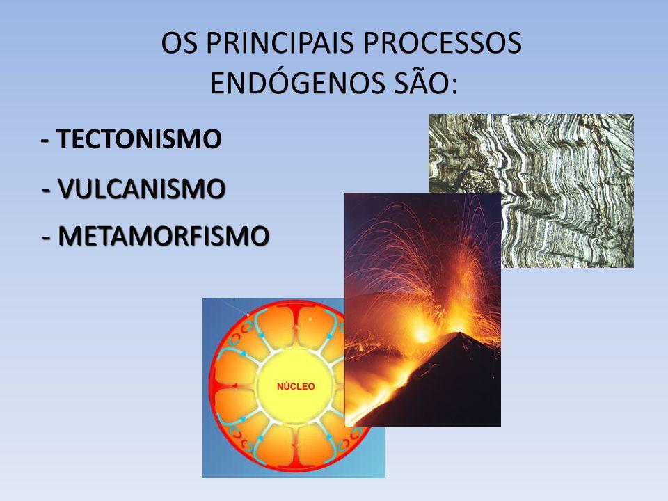 - TECTONISMO OS PRINCIPAIS PROCESSOS ENDÓGENOS SÃO: - VULCANISMO - METAMORFISMO
