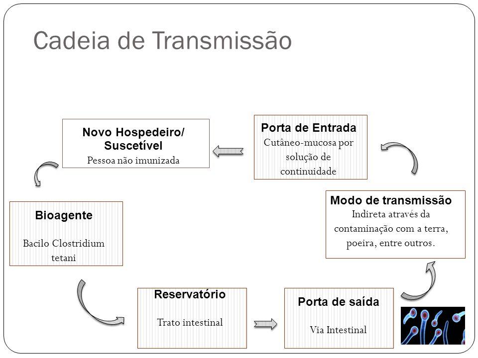 Cadeia de Transmissão Novo Hospedeiro/ Suscetível Pessoa não imunizada Porta de Entrada Cutâneo-mucosa por solução de continuidade Bioagente Bacilo Cl