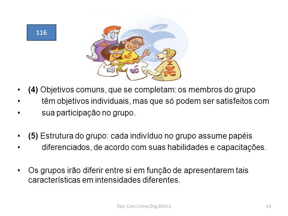 (4) Objetivos comuns, que se completam: os membros do grupo têm objetivos individuais, mas que só podem ser satisfeitos com sua participação no grupo.